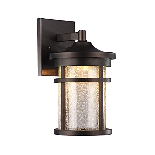 1 Downlight Wall Sconce - 4