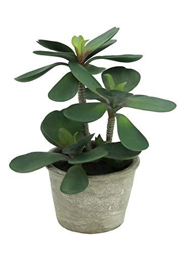 Línea Déco | Árbol de jade artificial | 29 cm | Planta verde artificial | Planta grasa | Decoración del hogar | Hogar Oficina