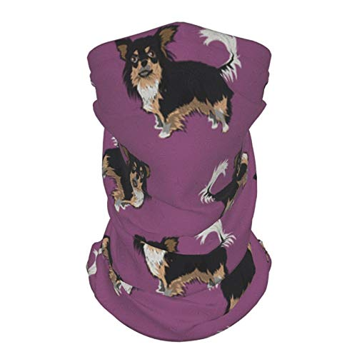 Ccycjasdkfewl Perro - Máscara mágica para bufanda morada, polaina para el cuello, bandana, pasamontañas