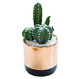 LXYLY Office Plants with Pot Artificial, Artificial Plant Pot Decoration, Artificial Succulent Plants in Ceramics Pots, Shelf Decorations Plants