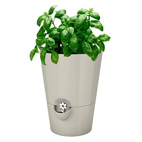Emsa Kräutertopf für frische Kräuter, Selbstbewässerung, Wasserstandsanzeiger, Ø 13 cm, Seidengrau, Fresh Herbs, 517532