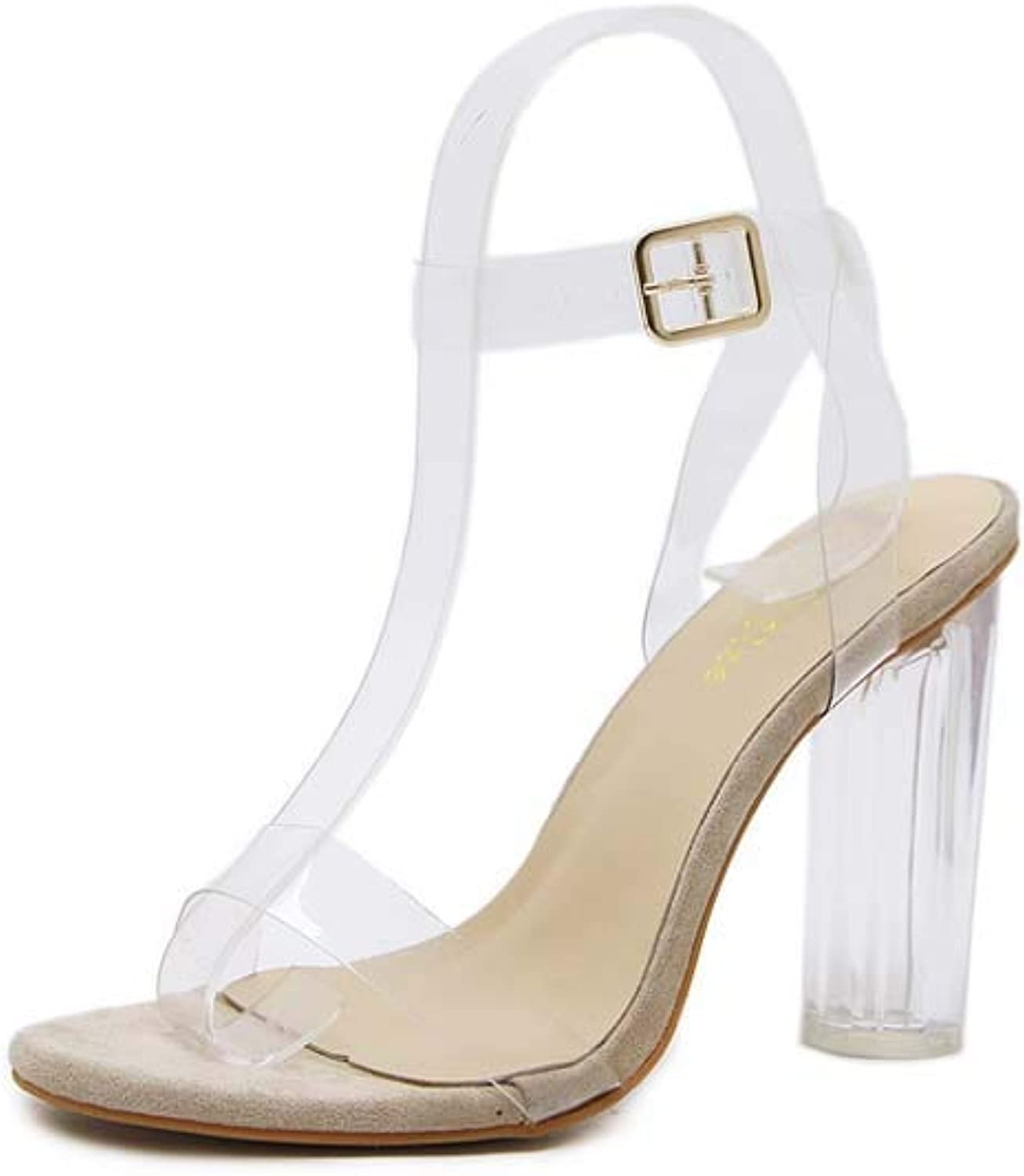 Lucite Clear Heels,Women's Chunky Block Strappy Transparent High Heel Pump Sandals,Fashion Ankle Strap Open Toe shoes