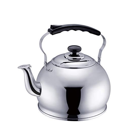 Spis Top Whistle Kettle 4-5L Silver Rostfritt Stål Tvättade tekanna med sil och ergonomiskt handtag, lämplig för lös te kaffe (Size : 4L)