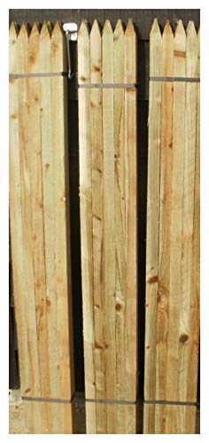 10 x 1.65m (5.5ft) tall square garden tree stakes - HC4 pressure treated