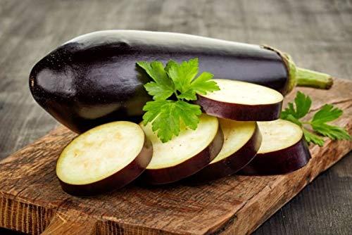PLAT FIRM GRAINES DE GERMINATION: 50 - Graines: Graines d'aubergine F1 hybrides Purple Panther - rendements élevés de 9\