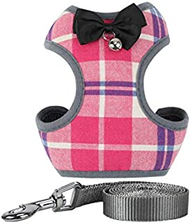ANTOLE Cute Dog Harness Leash Set Breathable Adjustable Pet Vest Harness with Bowknot Mesh Padded for Small Medium Puppy D...