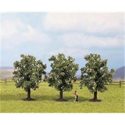 Noch 25511 - 3 Obstbäume, weiß blühend