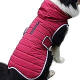 JoyDaog Sudadera de forro polar para perros medianos con capucha para perros medianos y abrigos para perros fríos e impermeables con capucha, color rojo M