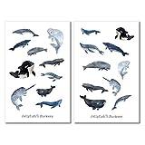 Wale Sticker Set | Niedliche Aufkleber | Journal Sticker | Planersticker | Sticker Wal, Meer, Unterwasser | Sticker Tiere, Fische, Strand