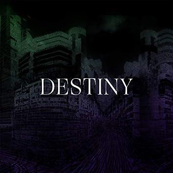 Destiny (feat. Marina P)