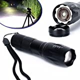 Aaa Flashlights Review and Comparison