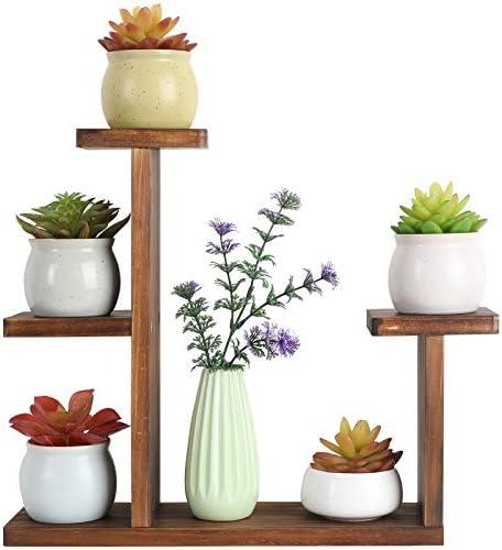 Windowsill plant stand