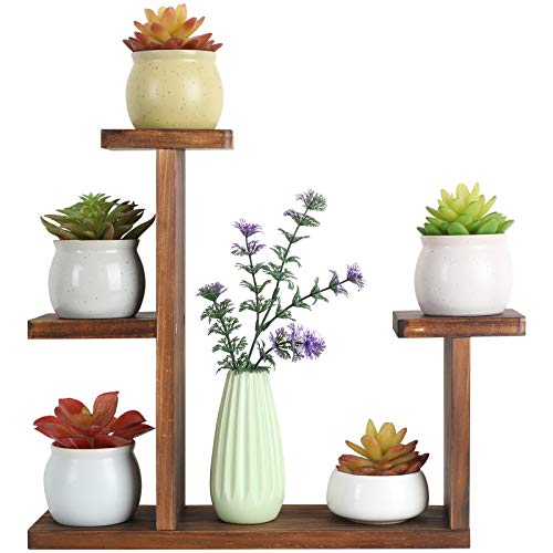 COOGOU Wood Desktop Plant Stand Indoor Small Windowsill Flower Shelf Tabletop Plant Shelf Holder Display Rack for Succulent Herb in Living Room Office