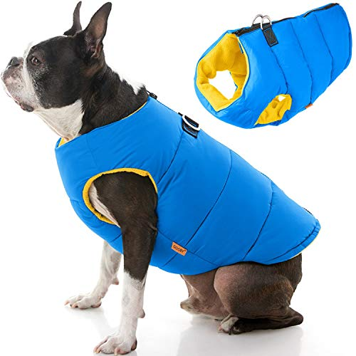 Gooby Padded Dog Vest - Solid Blue, Medium - Zip Up Dog Jacket Coat with D Ring Leash - Small Dog Sweater with Zipper Closure - Dog Clothes for Small Dogs Girl or Boy for Indoor and Outdoor Use