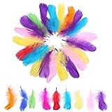 PTCOME 350pcs Plumes Loisirs Creatifs Colorées Plumes de Multicolore 9 Couleurs Plumes...