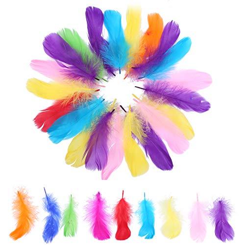 PTCOME 350 Pz Conjunto de Plumas de Colores Manualidades Plumas de Artesanía Natural 50-80 MM Plumas de Multicolor Natural para Decoraciones Disfraces Atrapasueños Bricolaje Bodas Fiestas Hogar