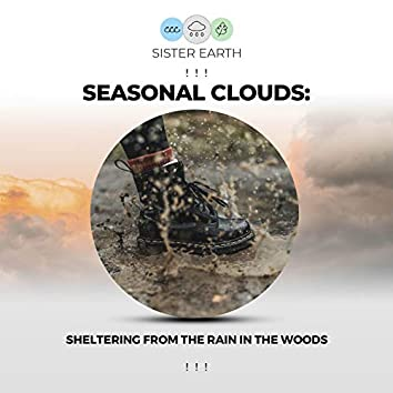 ! ! ! Seasonal Clouds: Sheltering from the Rain in the Woods ! ! !