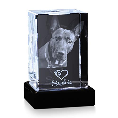 Crystal Impressions - Pet Customized Crystal Photo with 3D Laser Engraved Photo to Personalize Your Pet Picture as a Thoughtful Dog Memorial Gift or Pet Lover Gift (Mini Personalized - Heart)