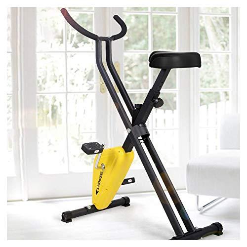 Tingeart Bicicleta EstáTica EstáTica, Bicicleta EstáTica Spinning, Pantalla LCD, Sensores De Pulso Muy Silenciosos, Bicicleta De Spinning/Fitness para El Hogar