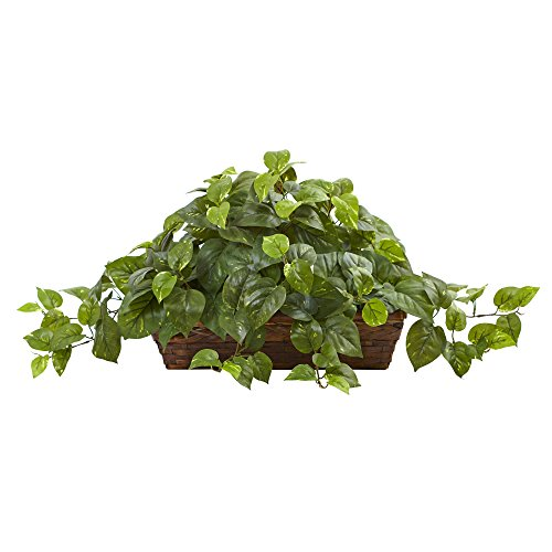 Nearly Natural Pothos with Ledge Basket, Green,34x18x15