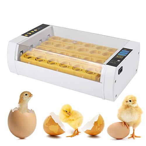Incubatrice automatica automatica per 24 uova, incubatore automatico per uova con controllo della temperatura per pollo, anatre, pollame, piccioni, quaglie