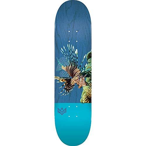 Mini Logo Planche de skateboard Cheveron Detonator Birch Lion Fish 21 cm