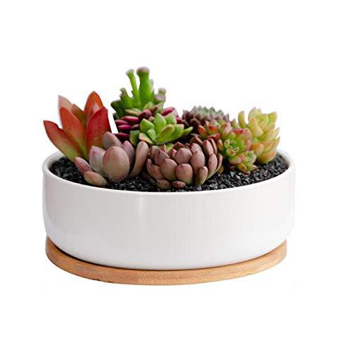Richaa 8CM Keramik Sukkulententopf , Runder Sukkulententopf Bonsai Töpfe mit Drainageloch und Tablett für den Innen im Innenbereich