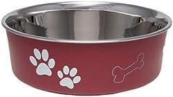 Best Dog Bowls for Maltese
