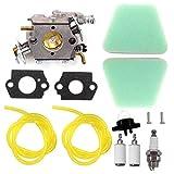 AISEN Carburetor Carb for Craftsman 42cc Chainsaw Air Filter Chain Saw Gasket PP220 1975 Woodshark 2150 Predator