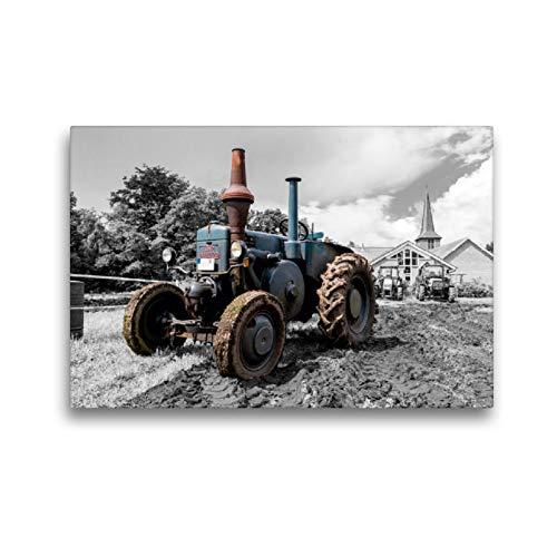 Premium Textil-Leinwand 45 x 30 cm Quer-Format Lanz Bulldog | Wandbild, HD-Bild auf Keilrahmen, Fertigbild auf hochwertigem Vlies, Leinwanddruck von Andrea Dreegmeyer