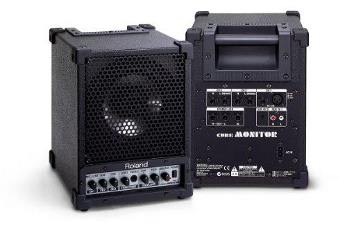 RolandCubeMonitor30WCM-30