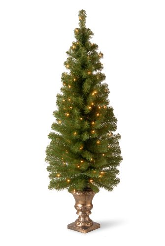 National Tree Company Pre-lit Artificial Christmas Tree For Entrances | Includes Pre-strung White Lights and Stand | Montclair Spruce - 5 ft