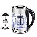 Wasserkocher 2200W 1,7L Edelstahl Glaswasserkocher Gblife Temperatureinstellung von 40 bis 100°C LED-Anzeige Elektrischer Wasserkocher Trockenlaufschutz BPA Frei Warmhaltefunktion (Transparent)