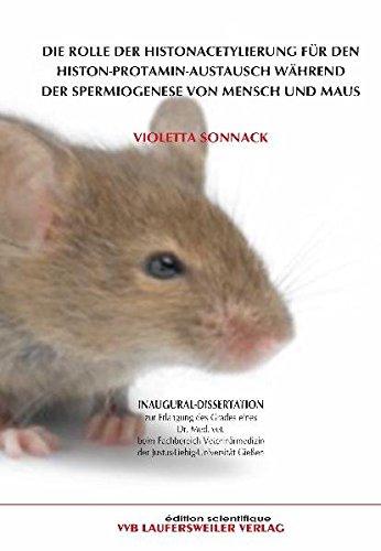 Die Rolle der Histonacetylierung für den Histon-Protamin-Austausch während der Spermiogenese von Mensch und Maus (Edition Scientifique)