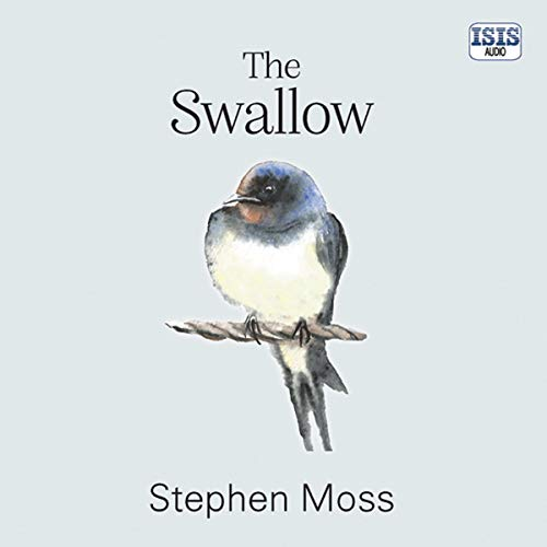 The Swallow cover art