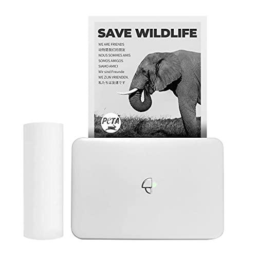 Stampante termica wireless compatibile con la finestra Android di iOS per la stampa di adesivi, logo, etichetta, ricevuta, foto, modalità di stampa in scala di grigi 300dpi
