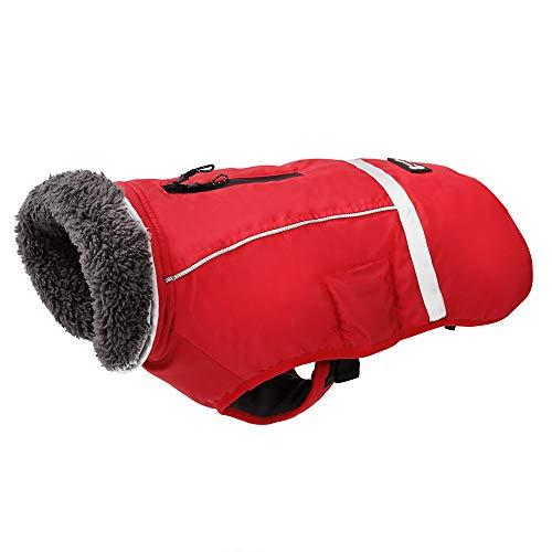 PENIVO Kaltes Wetter Reflektierende Mäntel einstellbar Hund Kleidung Winter wasserdicht im Freien Hund Jacke verdicken warme Hundemantel für Kleine mittelgroße Hundepullover (S, Rot)