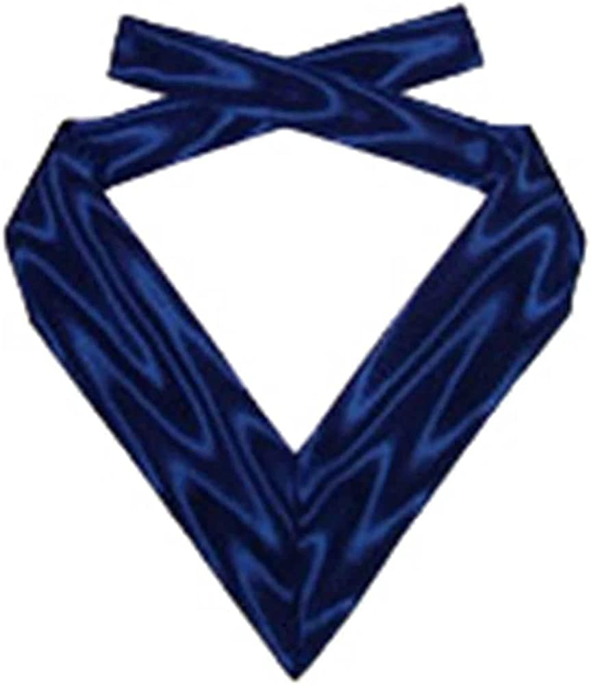 Order Of The Secret Monitor - Provincial - Acting Rank Collarette