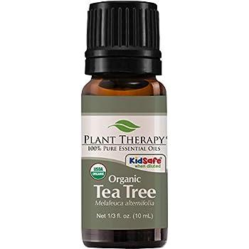 Plant Therapy Organic Tea Tree Oil  Melaleuca  100% Pure USDA Certified Organic Undiluted Natural Aromatherapy Therapeutic Grade 10 mL  1/3 oz