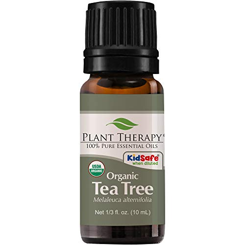 Plant Therapy Organic Tea Tree Oil (Melaleuca) 100% Pure, USDA Certified Organic, Undiluted, Natural Aromatherapy, Therapeutic Grade 10 mL (1/3 oz) Hawaii