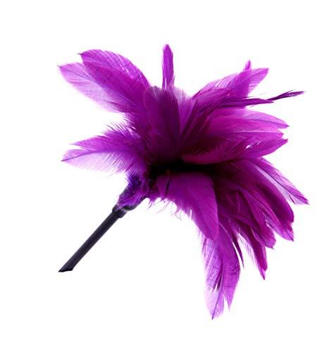 wsibwinde Fetish Feathers Teasing Leather Pole Feather Toy (Purple)
