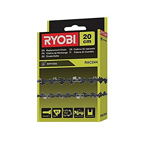 Ryobi 5132002717 RAC244, Grau