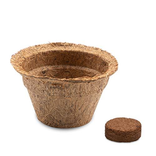 HappySeed 20x Kokos Anzuchttöpfe & Quelltabletten torffrei für eine erfolgreiche Anzucht - ideal für Stecklinge & Samen - verschiedenen Größen (0,05 L - Ø 6 cm)