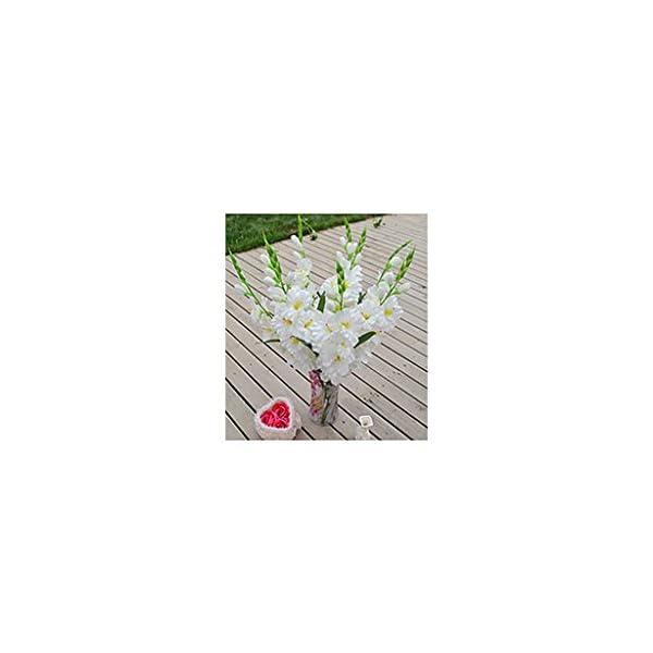 F Fityle 4pcs 80cm Tallo De Flor De Gladiola Artificial para Decoración del Hogar -02