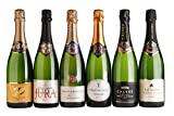 Mixed Selection of French Sparkling Wines - 6 x