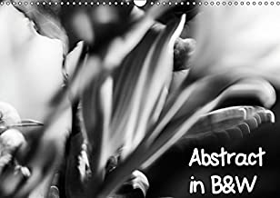 Abstract in B&W 2019: Abstract Black and White Images (Calvendo Art)