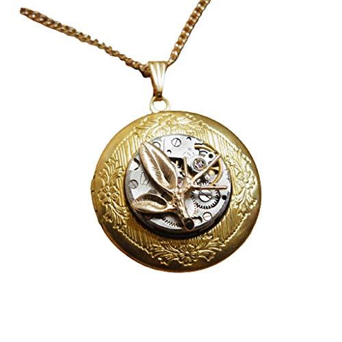 ZYM Collar de medallón Que sostiene imágenes Locket Collar Vintage Redondo Foto Colgante Joyería Familia Regalos (Color : Gold)