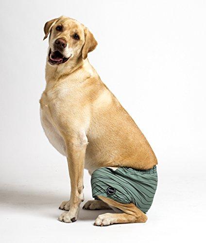 Kove Mate Hunde-Badehose, recycelt, schnelltrocknend, 4-Wege-Stretch, passender Haustier-Badeanzug - - Large
