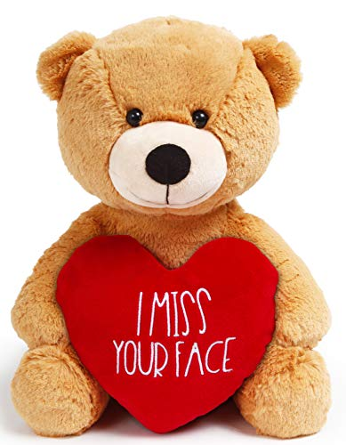 Teddy Bear Girlfriend – Miss Your Face 12 Inch Plush – Valentines Teddy Bear for Long Distance Gifts, Boyfriend, Miss You Stuffed Animal, Heart by JENVIO