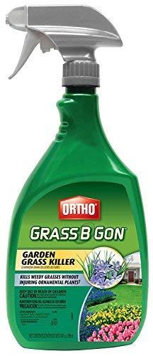 Ortho 0438580 Grass B Gon Garden Grass Killer Ready-to-Use, 24-Ounce (2)